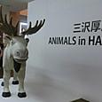 20131012 三沢厚彦さんの彫刻展
