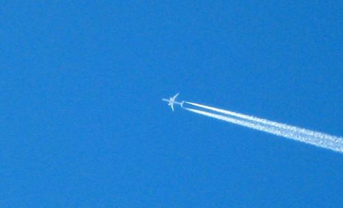 20141227_ハナのお散歩中に見た飛行機