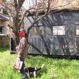 2010/03/14撮影 お散歩の途中(2)