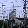 2010/08/10撮影 朝のお散歩2