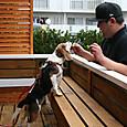 2012/03/18撮影 カンフォーラの店長さん