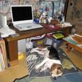 2009/7/26撮影 ubazakuraさんの書斎