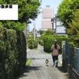 2010/05/02撮影 いつもの散歩道