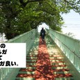 2010/05/02撮影 浜松市街地へ行く途中