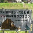 2010/07/17撮影 馬込川
