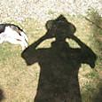 2012/08/05_ハナと影法師