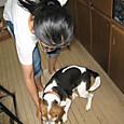 2012/09/02 ハナの夕ご飯