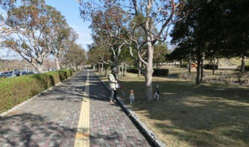 2012/11/25 遠州灘海浜公園にてその3