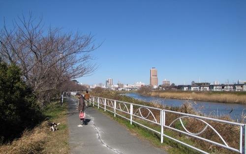 2010/01/16撮影 ハナとubazakuraさん