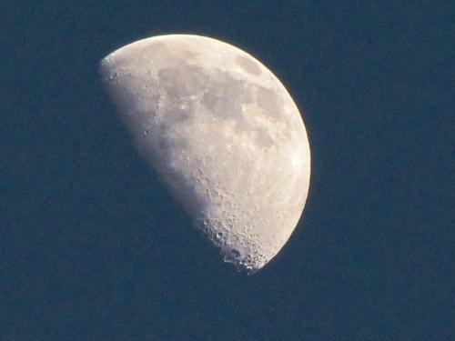 2010/01/24撮影 お月さま