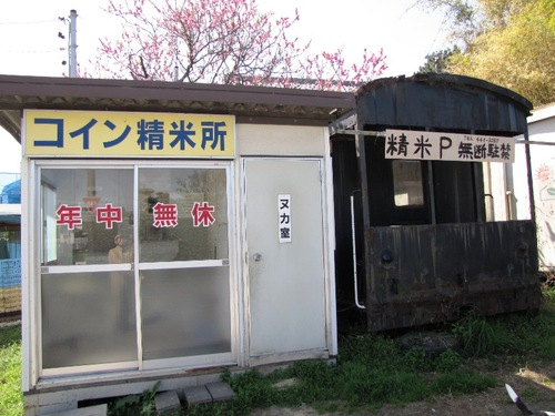 2010/03/14撮影 お散歩の途中