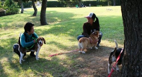 2011/10/08撮影 junjunさんとubaさん
