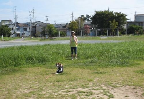 2009/08/23撮影 ハナ2