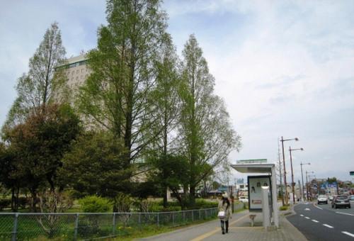 2012/04/21 浜松城公園
