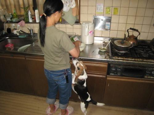 2012/10/06 晩御飯の準備