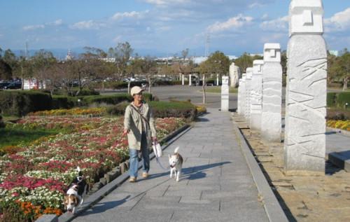 2012/10/20 遠州灘海浜公園