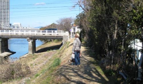 20130127 ハナのお散歩