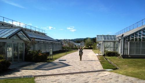 20130501 フルーツパークの温室