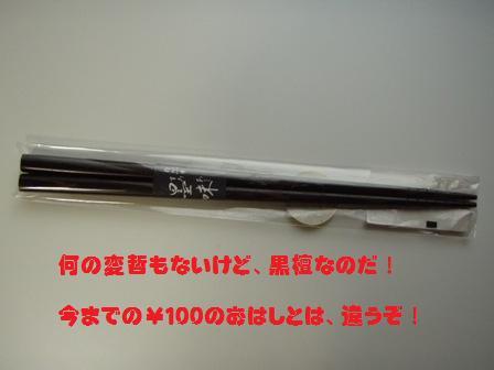 P5110540_3