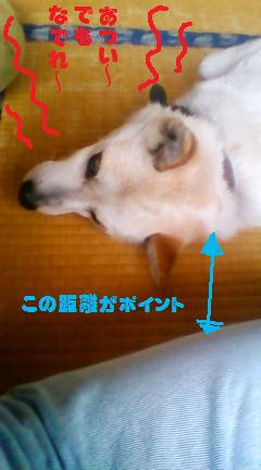 20080805102834_2