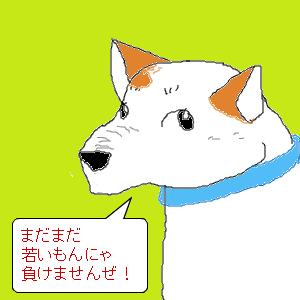 Cocolog_oekaki_2009_05_18_23_07