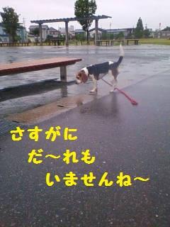 20110707164951_2