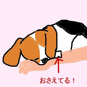 Cocolog_oekaki_2012_10_12_20_37